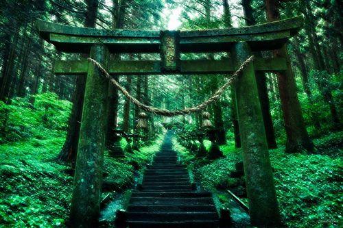 上色見熊野座神社へのアクセスや駐車場は?読み方も紹介