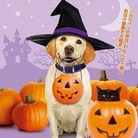 【ハロウィン映画】子供向けの怖くないオススメ映画を紹介!家族で楽しめる!