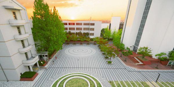 法科 やばい 経済 大阪 大学