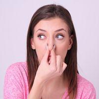 鼻叩きの正しいやり方や効果を調査!逆効果の危険性は?