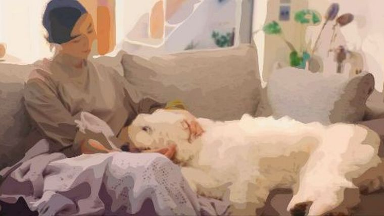 ファブリーズ・ナチュリスCM出演の犬の犬種は?モデル犬?